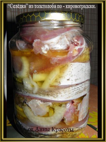 Селёдка из толстолобика в домашних условиях рецепт